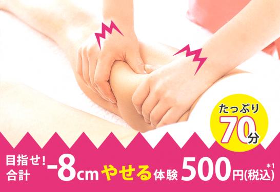 エルセーヌ -8cmやせる体験 70分500円